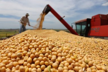Aumento no preço do diesel vai impactar custo do transporte de grãos em até 2,5%
