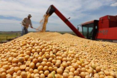 Brasil exporta recorde de 5,7 mi t de soja em agosto