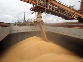 Exportação de soja por Paranaguá aumenta 35% em julho