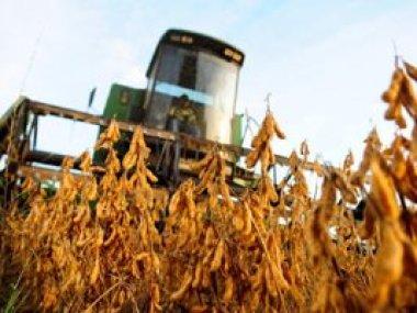CNA e Apex-Brasil promovem ações para valorizar o agronegócio brasileiro
