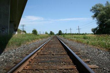 Movimentação de açúcar por ferrovias cresce 187% em 11 anos no Brasil