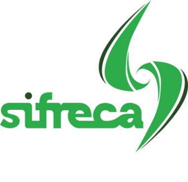 Freight Information System - SIFRECA