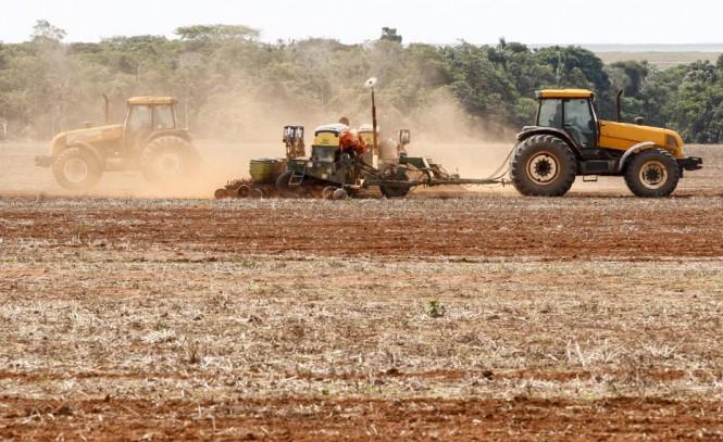 MT terá oferta de soja 2,7% maior
