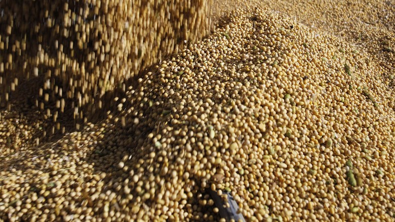 Estados Unidos elevam estimativa para a safra de soja