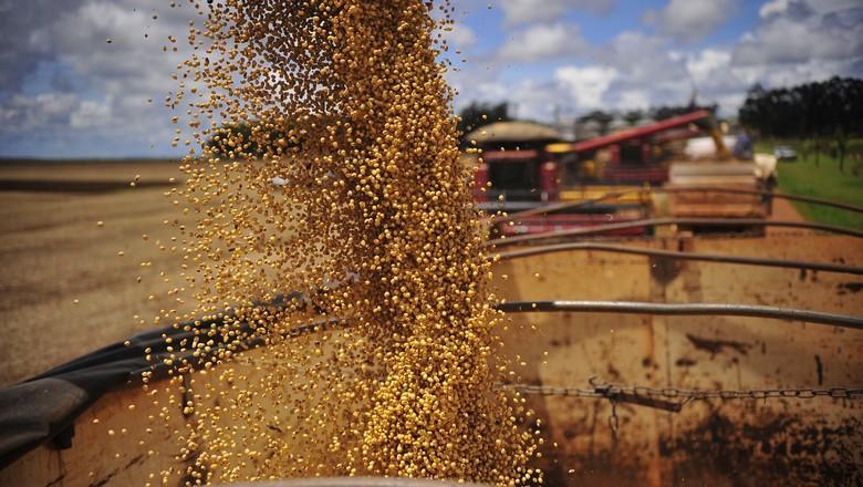 Venda de soja da safra nova chega a 25%