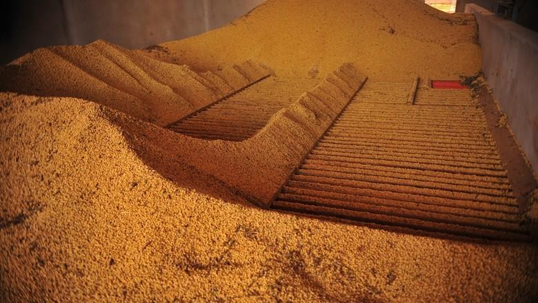 Clima deve definir preços dos futuros de milho e soja, avalia Rabobank