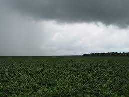 EUA 2015: Junho termina com chuvas históricas no Meio-Oeste e incertezas sobre área de plantio