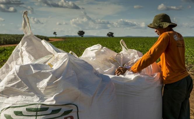 Escassez vai reduzir aplicação de fertilizantes no campo
